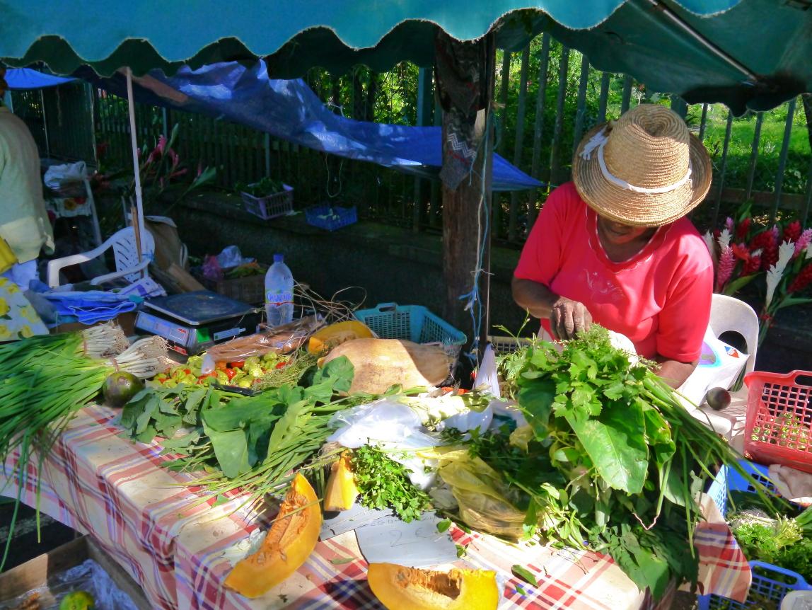 Mamie Suzanne au travail avec légumes à soupe, dont entre autres les oignons pays, le giraumon et le persil